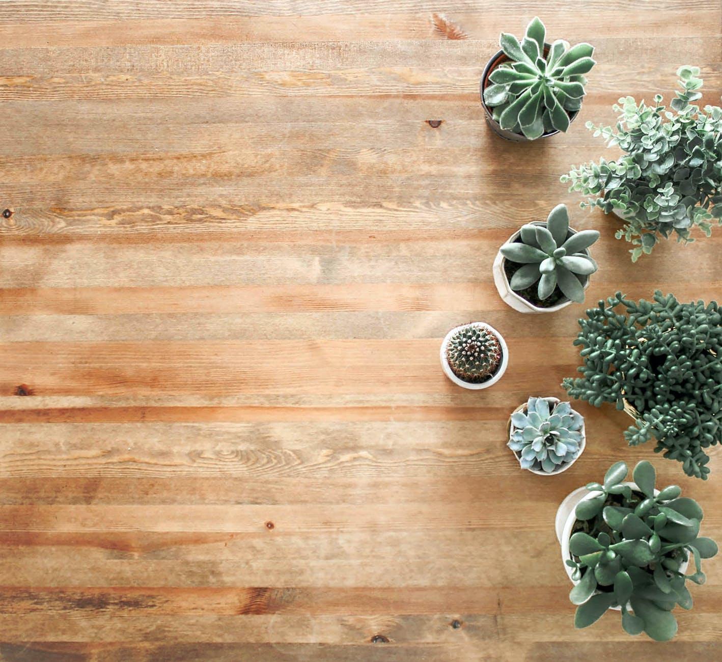 Decor Floors Brampton